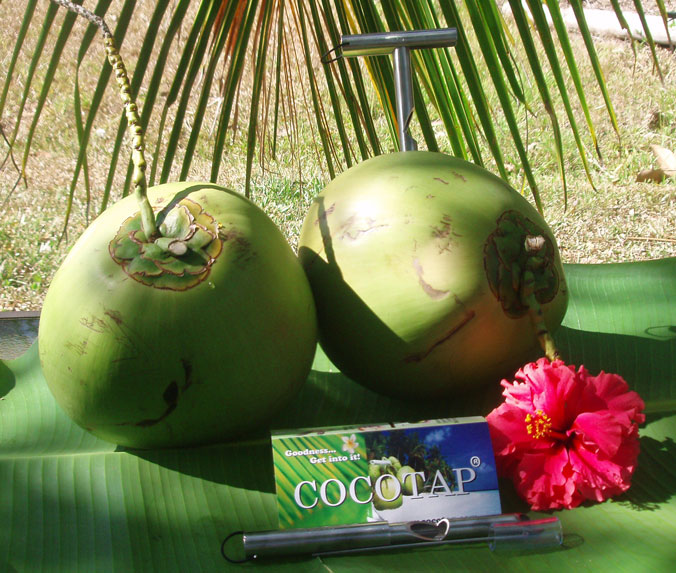 Cocotap - Coconut opener