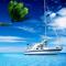 Yacht-Coconut-60x60